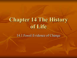 Ch 14 History of Life
