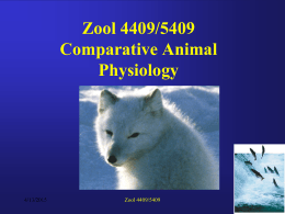 Zool 4409/5409 Comparative Animal Physiology