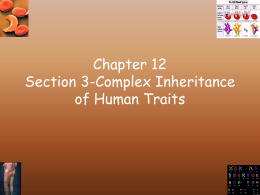 Chapter 12 Section 3-Codominance in Humans