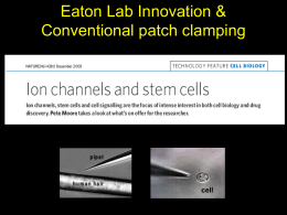 Eaton Lab Innovation and Conventional Patch Clamping