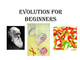 Evolution for Beginners