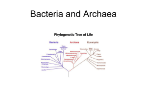 Section 19–1 Bacteria (pages 471–477)