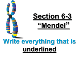 Section 6.3 Study Guide
