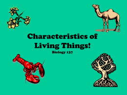 Characteristics of Living Things!