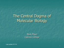 Molecular Biology buy already written essays