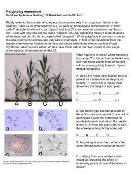 Polyploidy_worksheet