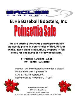 POINSETTIA SALE We are offering gorgeous 6