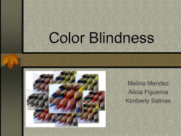 Color Blindness powerpoint