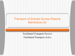 SOP-Transport-2f