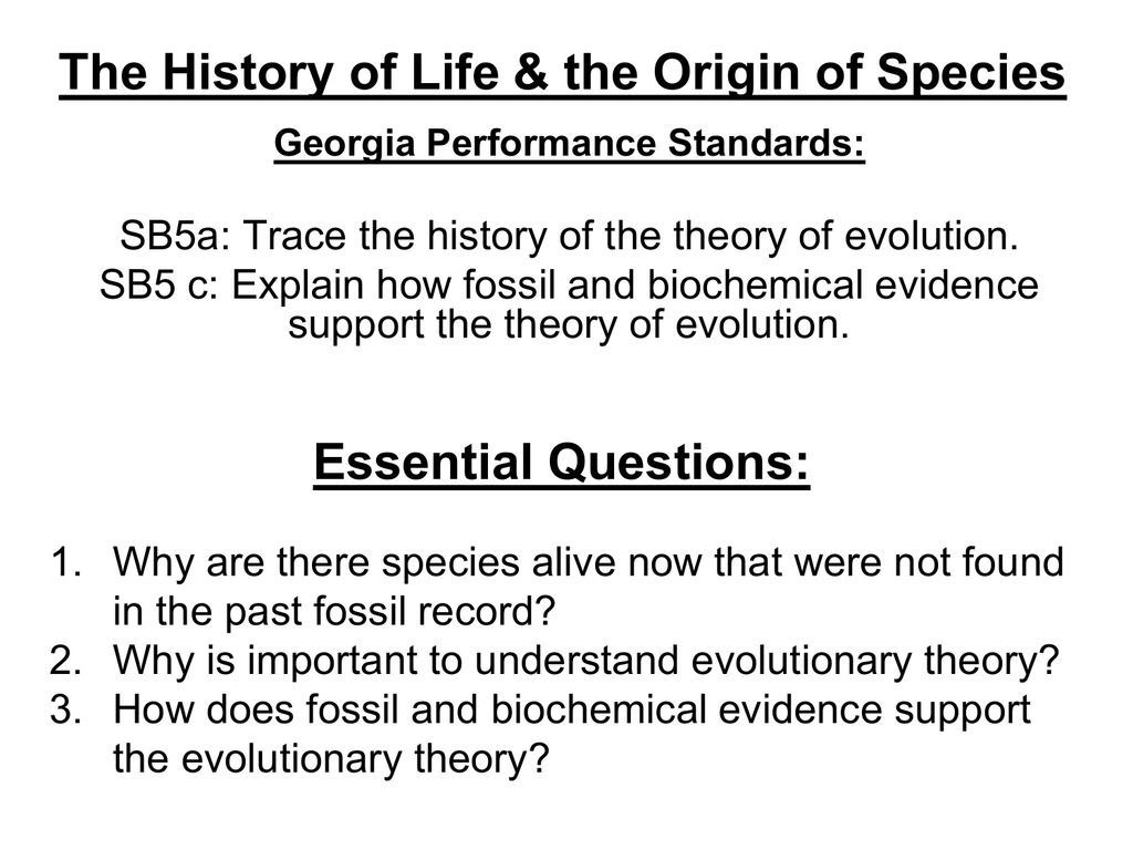 worksheet Biochemical Evidence For Evolution Worksheet the history of life
