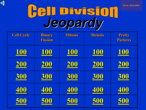 Cell Division Jeopardy