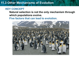 11.3 Other Mechanisms of Evolution