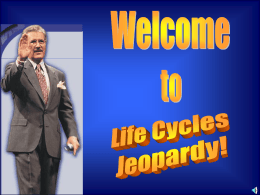 Life Cycles JEOPARDY