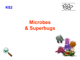 Microbes Superbugs