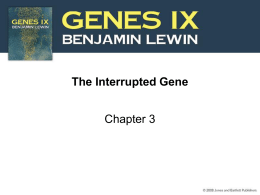 The Interrupted Gene