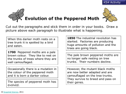 Natural Selection Peppered Moth Simulation