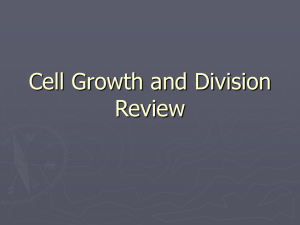 Cell Growth and Division Review