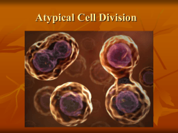 Atypical Cell Division