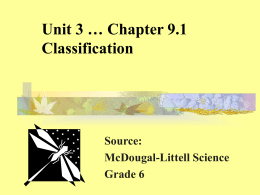 Unit 3 Chapter 9 Classification