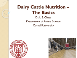 Dairy Cattle Nutrition * The Basics