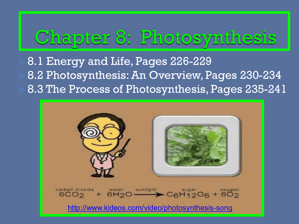 Chapter 8 Photosynthesis-Teacher Notes
