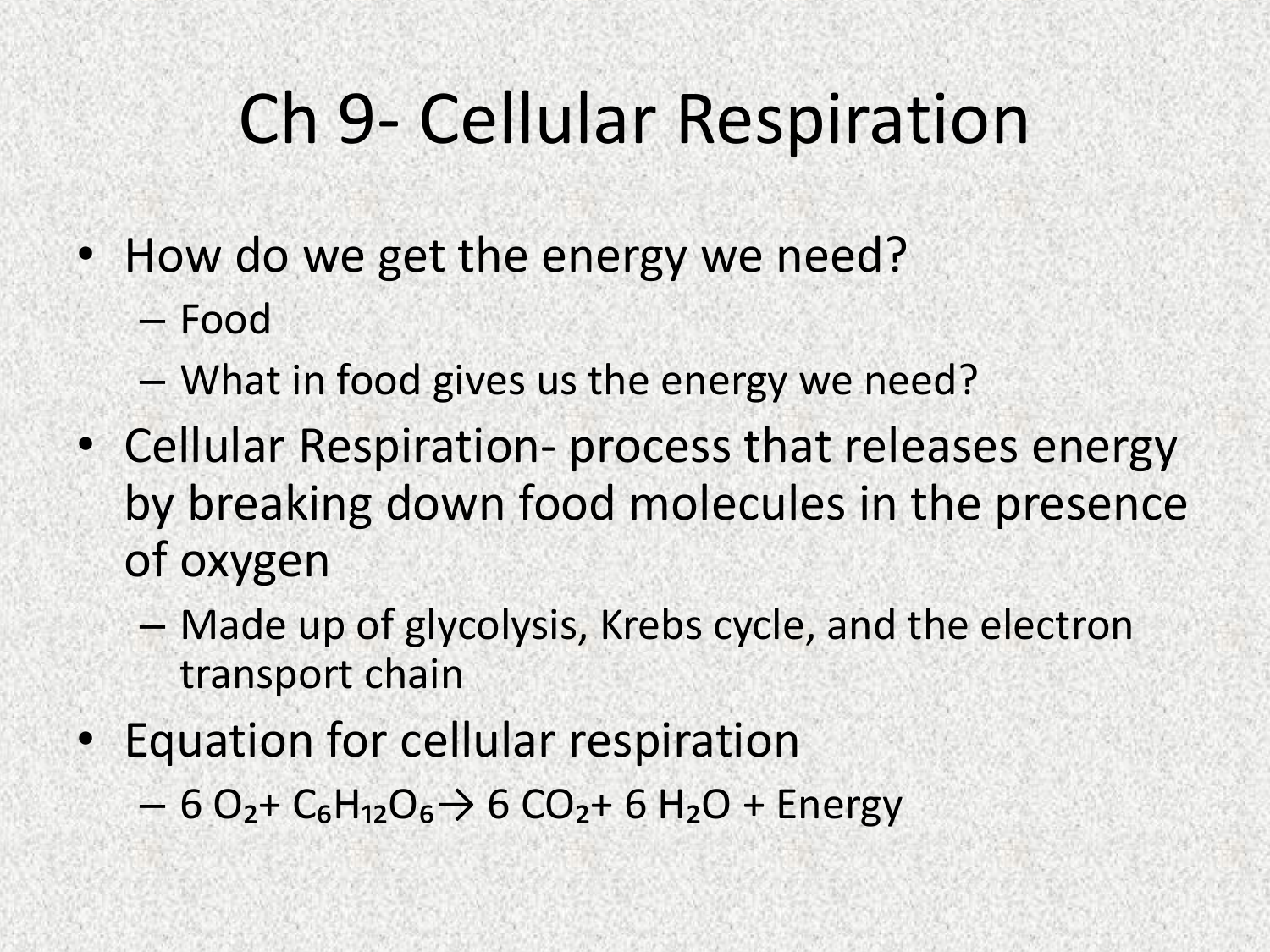Worksheet 92 The Process Of Cellular Respiration Worksheet Answers