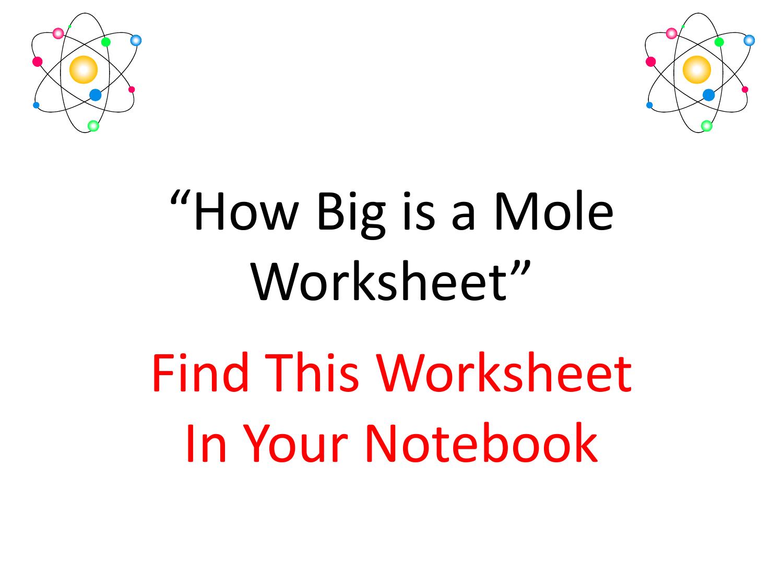 How Big is a Mole Worksheet