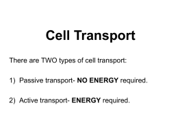 Cell transport ppt. - student notes