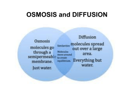 Osmosis and Diffusion Powerpoint