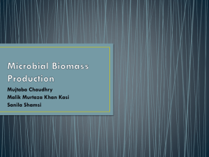 Microbial Biomass Production Mujtaba Ch