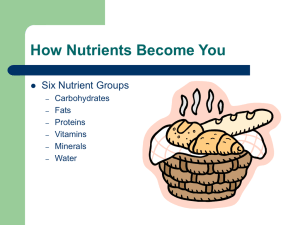 How Nutrients Become You