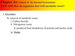 Chapter 44 - Excretory