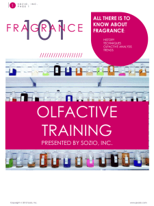 Fragrance Collection 11-12