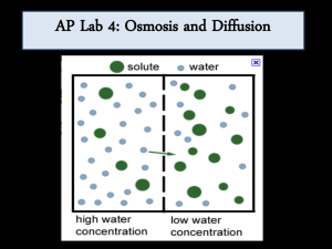 AP Lab 1 Osmosis and Diffusion