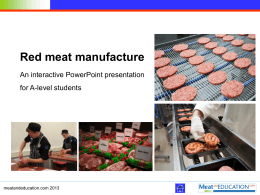 6.93 MB - Meat and Education