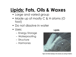 Lipids: Fats, Oils & Waxes