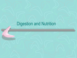 D- Digestion and Nutrition