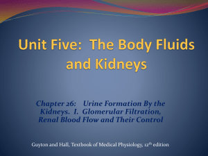 Physiologic Anatomy of the Kidneys