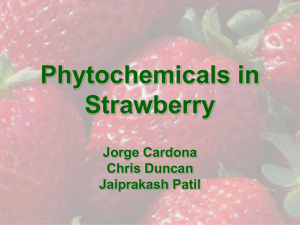 Phytochemicals in Strawberry