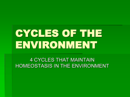 CYCLES OF THE ENVIRONMENT