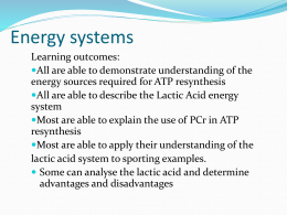 Simple Understanding of our Energy Systems     Rozendal Fitness