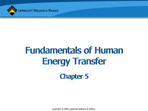 Fundamentals of Human Energy Transfer