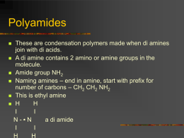 Polymers Amiders - Clydebank High School