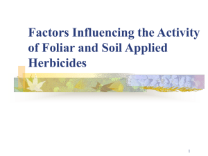 Factors Influencing the Activity of Foliar and Soil Applied