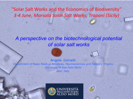 4 Corcelli Angela - Biotechnological Potential of Solar Salt