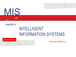 Chapter 13 Intelligent Information Systems