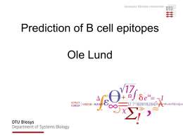 B-cell epitopes