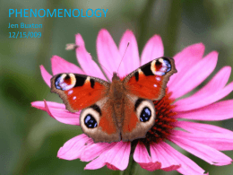 Ways of Knowing Phenomenology Powerpoint