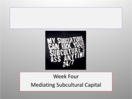 Mediating Subcultural Capital