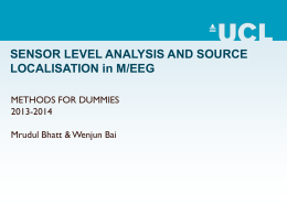 M/EEG: Statistical analysis and source localisation